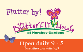 Butterfly House Ad image